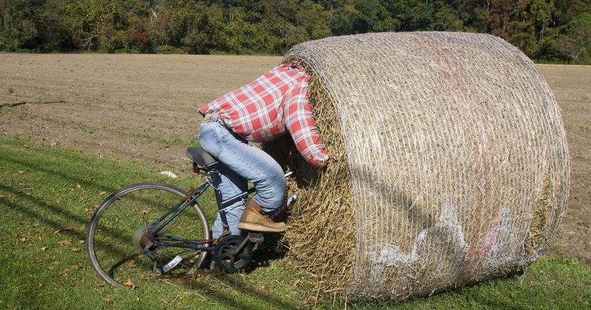 Uczestnicy badania w grupie eksperymentalnej jednocześnie ćwiczą na rowerze stacjonarnym i rozwiązują zadania