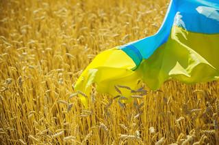Kijów odbudowuje handel zagraniczny