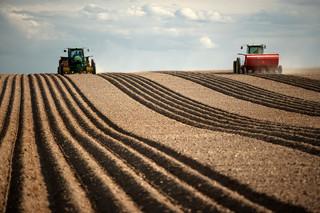 'Made in Poland': Rolnikom ekologia nie opłaca się