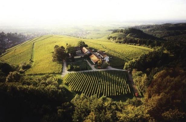 Winnica w okolicy Baden-Baden (Niemcy); Cena 14,8 mln EUR; źródło Christie's International Real Estate