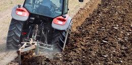 Rolnik nie sprzedał ziemi deweloperom i szykuje pole pod żniwa. Między blokami