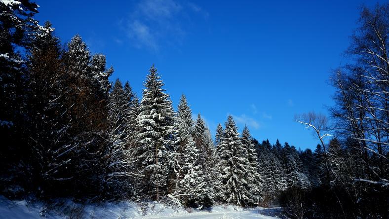Jaka pogoda czeka nas w sobotę 7 stycznia 2017 roku?