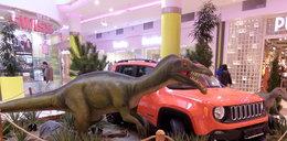 Dinozaury opanowały galerię