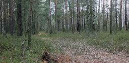 Porwał 7-latka i zaciągnął do lasu? Co naprawdę wydarzyło się w Garwolinie?