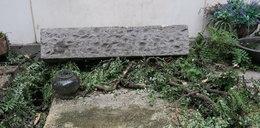 Zniszczony grób zasłużonego Polaka