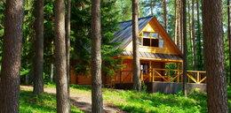 Lasy Państwowe wybudują domy pod wynajem