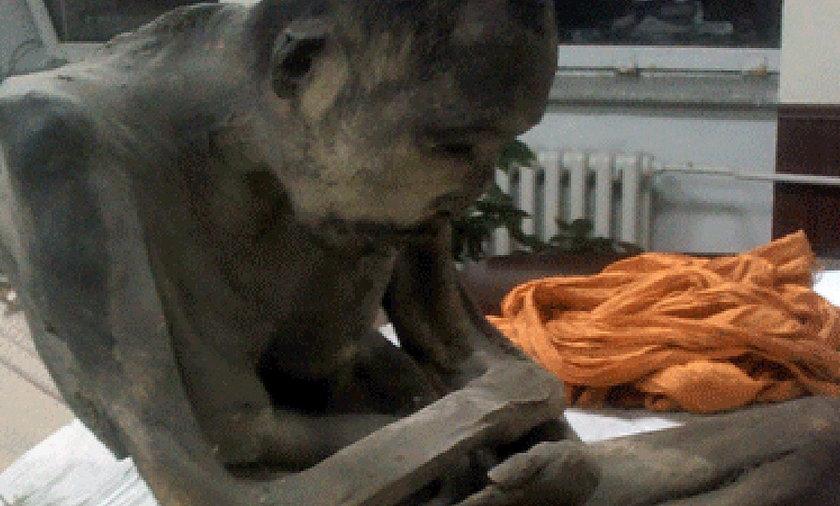 Mumia mnicha z Mongolii