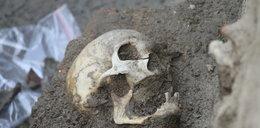 Ludzkie szczątki na deptaku w Rzeszowie. Odkryto tajemnicę