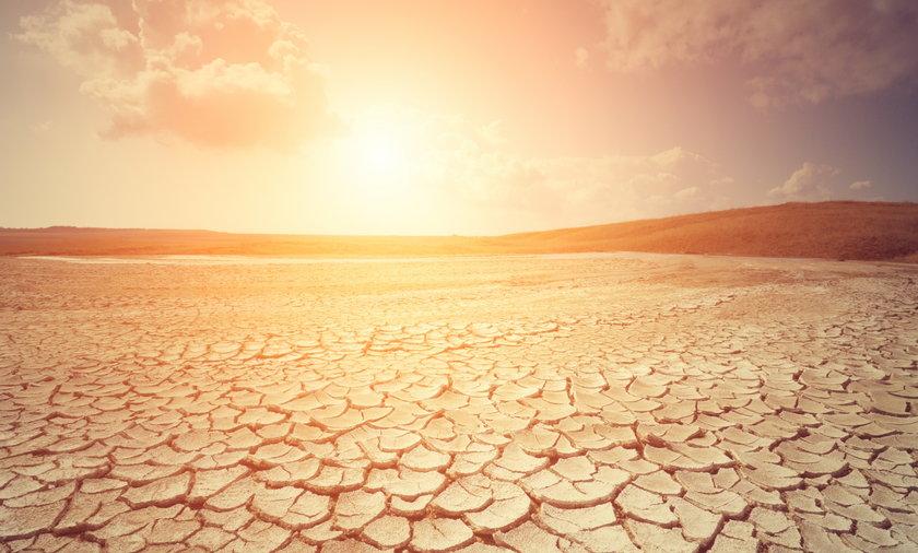 W okolicach 2100 roku strefa umiarkowana może być umiarkowana już tylko z nazwy - prognozują naukowcy.