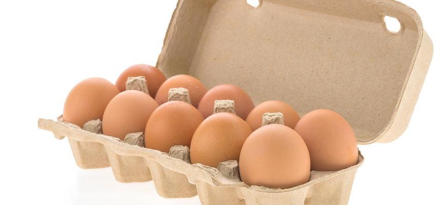 Salmonella na jajkach. Możesz mieć je w swojej lodówce!