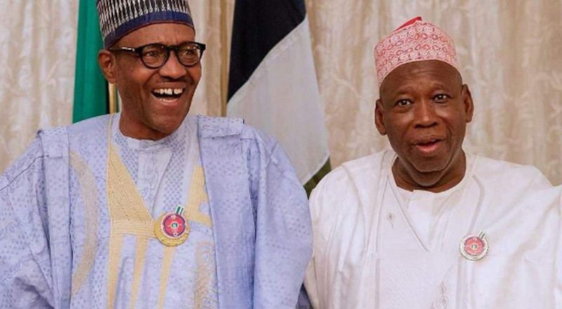 NANS to Buhari: Investigate corruption allegations against Gov. Ganduje