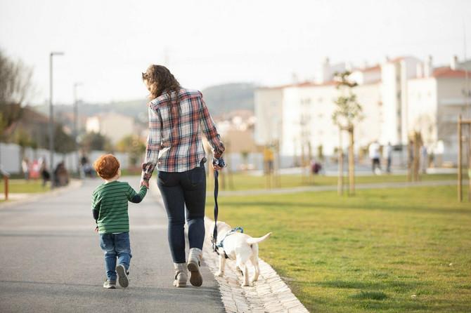 DA se dete ne bi izgubilo u gužvi, preduzmite ove mere
