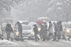 BIĆE I DO POLA METRA Sneg ne prestaje, bićemo POTPUNO ZAVEJANI do kraja dana, toliki sneg NISMO VIDELI GODINAMA