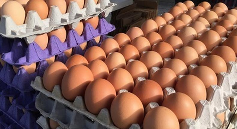 Gov't planning to replace eggs with Chinese mackerel for students – GNAPF