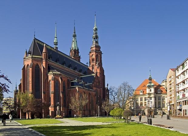 Legnica, katedra