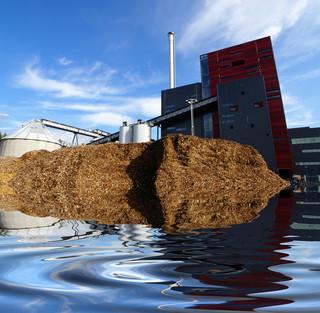 Czy biomasa to paliwo odnawialne?