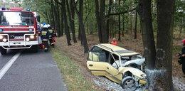 Kierowca wjechał w drzewo. Zginął na miejscu