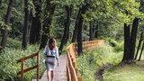 Chcesz poobcować z przyrodą w Katowicach? W Dolinie Trzech Stawów to możliwe