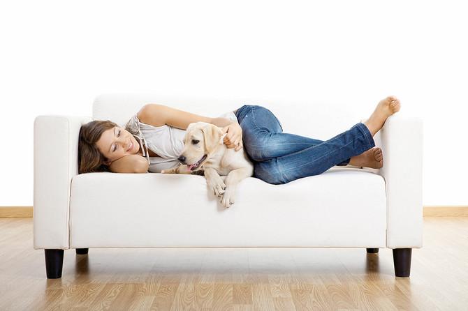 Oni koji imaju psa kao ljubimca osećaju se manje usamljeno i lakše stiču prijatelje