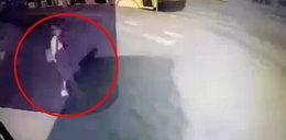 Śmierć pod kołami autobusu. Kierowca nie mógł nie widzieć pieszej [OTO DOWÓD]