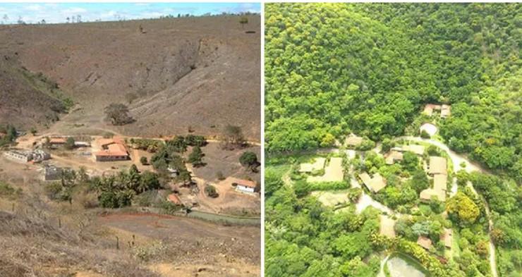 Kišna šuma Brazil