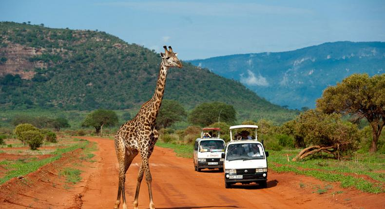 Tourists during a past tour of Tsavo East