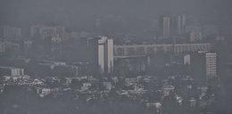 Tyle kosztuje darmowa komunikacja w czasie smogu