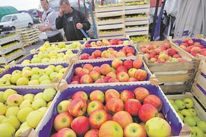Jabuka koje uvozimo PRSKA SE I DO 24 PUTA, ali to ne znači i da je najopasnija. Evo gde ima NAJVIŠE PESTICIDA