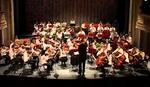 """Koncert Filhamornije mladih """"Borislav Pašćan"""" posvećen Milošu Crnjanskom"""