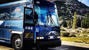 Kierowca autobusu zajechał do motelu, żeby się przespać. Wszystkich pasażerów zostawił w pojeździe