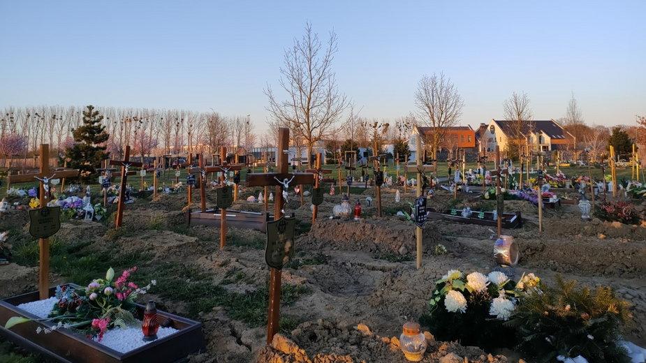 Cmentarz Zachodni w Szczecinie