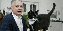 Zwierzęta prezydenta znalazły nowy dom