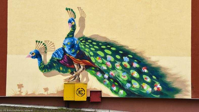 Jeden z białostockich murali