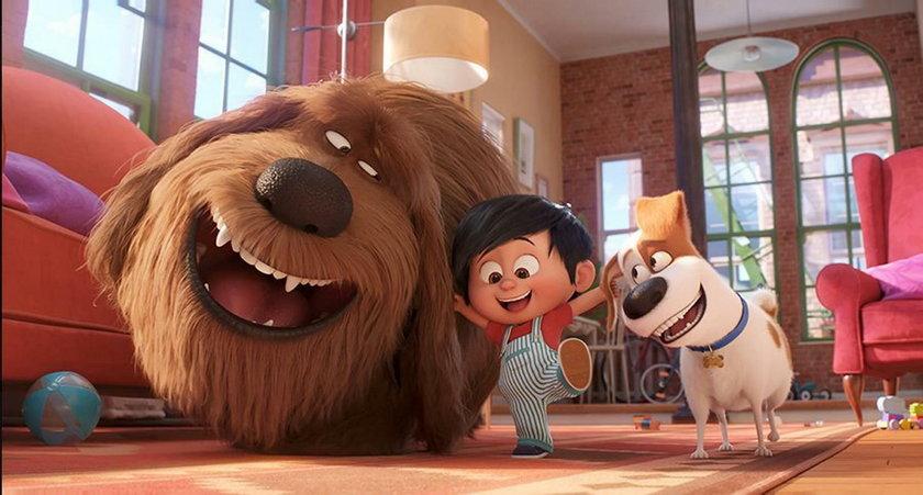 Sekretne życie zwierzaków domowych 2 już w kinach