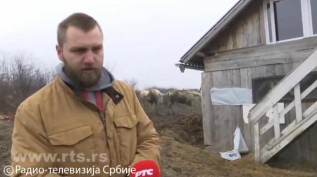 Miloš Gajić, spasavanje konja