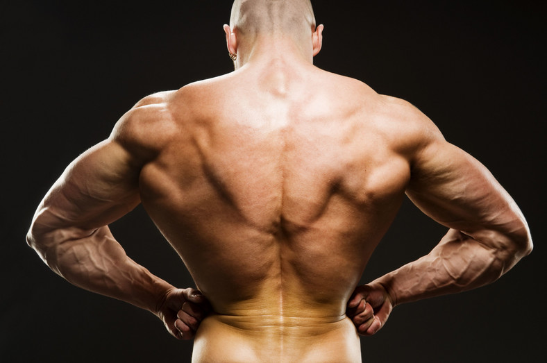 Body Builder Posing - Rear Lat Spread