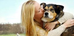 Bardziej niż ludziom współczujemy... psom