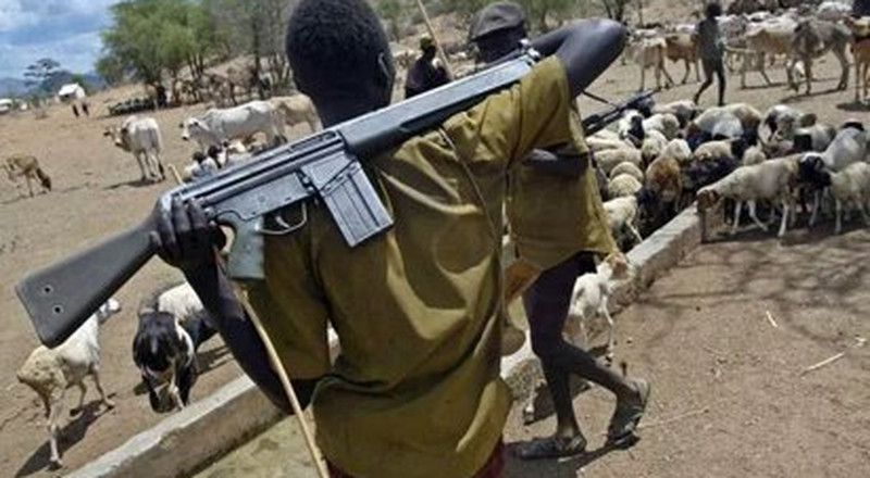 Insecurity: Ex-Senator urges herdsmen to fish out bad elements among them