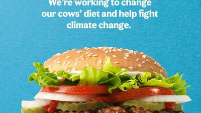 Burger King is debuting a new Whopper made from cows that burp and fart 33% less