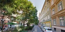 W Łodzi ulice mają się zmienić w ogrody