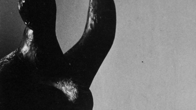 """Podczas wystawy przedaukcyjnej zaprezentowane zostaną również niezwykle rzadkie odbitki wybitnego polskiego piktorialisty, Tadeusza Wańskiego, unikatowe wczesne prace Pawła Pierścińskiego, czy słynne zdjęcie Ryszarda Horowitza """"Nedda"""". Z okładki kultowej już książki Edwarda Hartwiga """"Fotografika"""", pochodzi zdjęcie ukazujące córkę artysty, Danutę."""