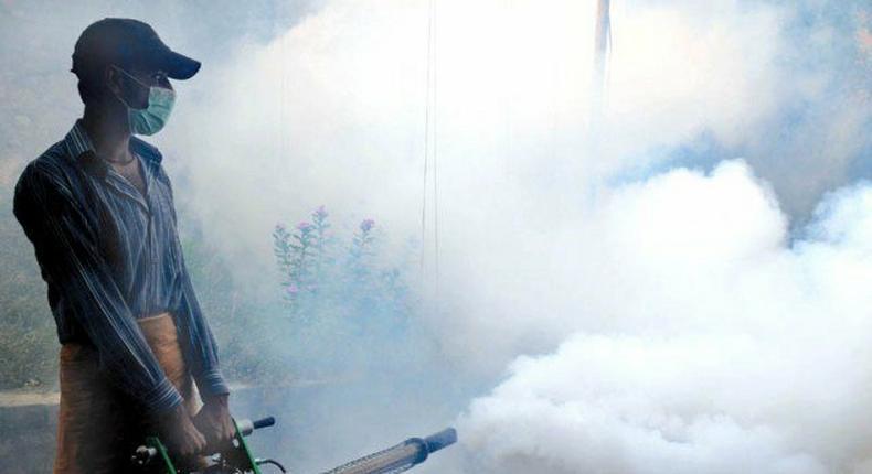 Parents' suicide over son's death forces Delhi to tackle dengue