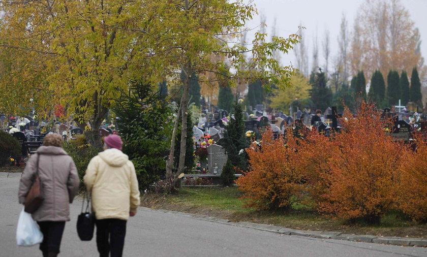 cmentarz Łostowicki