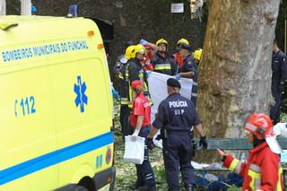 Portugalia: Drzewo przygniotło ludzi na Maderze. 11 zabitych