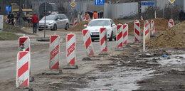 Znikają stare drzewa, bo budujątu parking