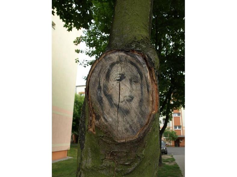 Cud w Międzyrzeczu? Mata Boska na pniu drzewa?