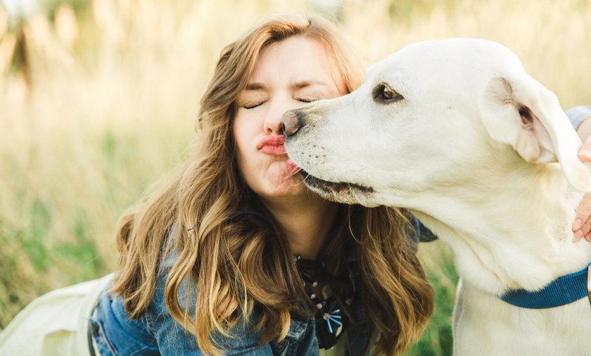 Psy mogą przenosić na właścicieli bakterie