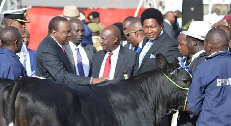 President Uhuru Kenyatta buying a bull for Sh1 million in 2018