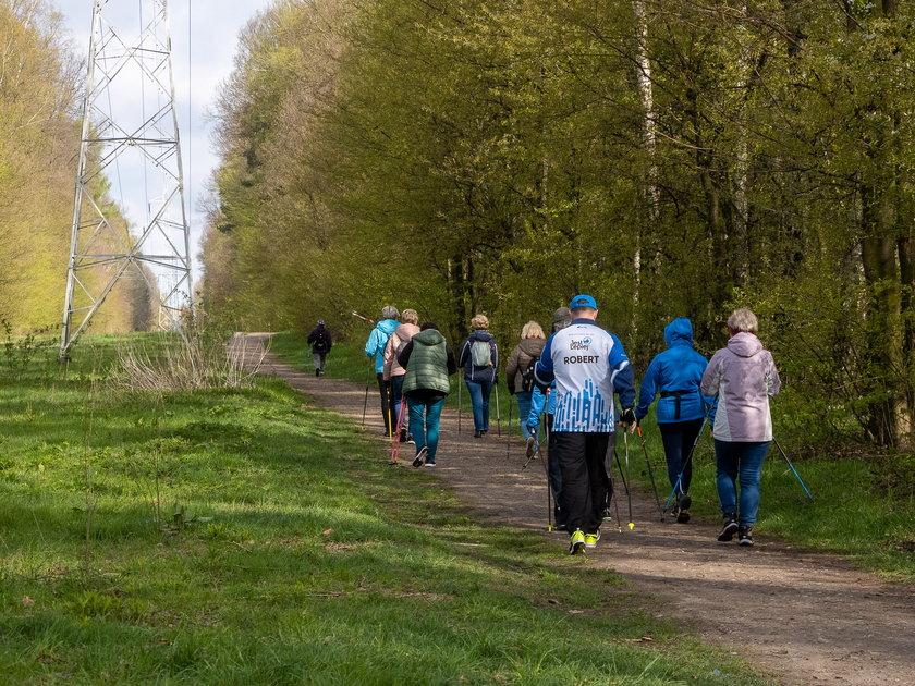 Maraton na raty w Łodzi. Dla seniorów i nie tylko