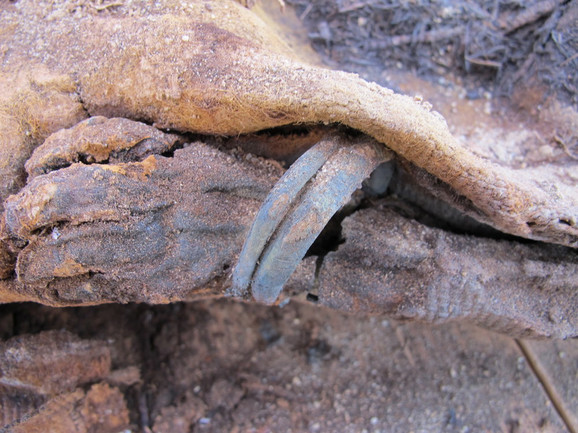 Pronađena mumificirana ruka sa narukvicama
